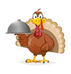 happy thanksgiving day funny turkey bird vector image