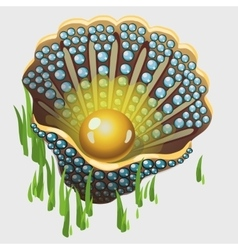 Open golden shell box with pearl and algae vector image