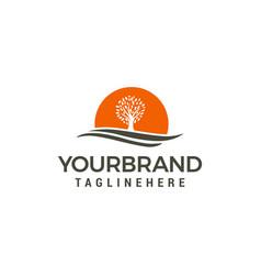 tree sun logo design template vector image