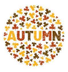 word autumn surrounded tree leaf vector image