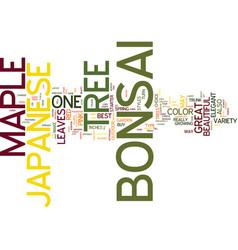 The elegant japanese maple bonsai text background vector