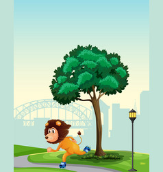 a lion playing roller skate in park vector image