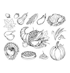 autumn holiday hand drawn symbols set vector image