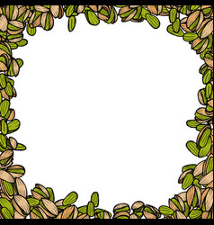 Background with pistachio vector