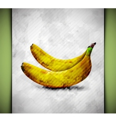 Banana watercolor vector