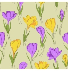 crocus seamless patterm 3 purple yellow vector image