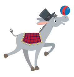Funny gray donkey with ball vector