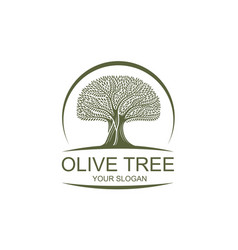 label for olive oil vector image