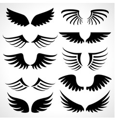Wings icons set isolated on white background vector