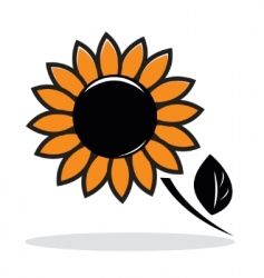 abstract sunflower vector image vector image