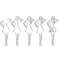 Beautiful young women contour in drawing sequence vector image