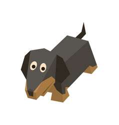 breed isometric badger-dog vector image