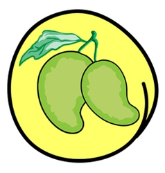 Fresh Green Mangoes on Round Yellow Background vector image
