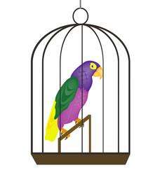 Beautiful tropical bird parrot in iron hutch vector