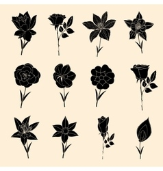 Doodles Flowers collection vector image