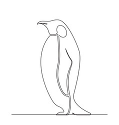 penguin continuous line drawing vector image
