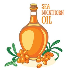 Sea buckthorn oil vector