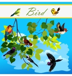 Birds on the branches tree flying in sky vector image