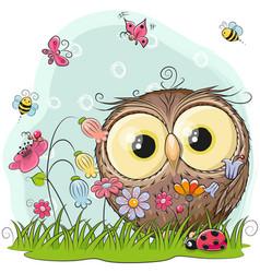 cute cartoon owl on a meadow vector image