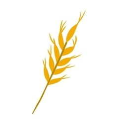 Ear of wheat icon vector