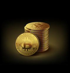 gold coins bitcoin on dark background vector image