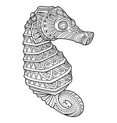 sea horse style for coloring page vector image vector image