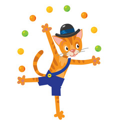 funny cat juggler vector image vector image