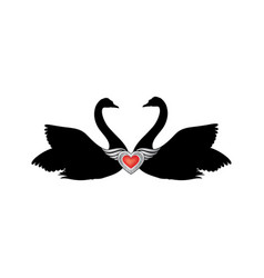birds in love with winged red heart decoration vector image
