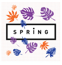 Spring letter with green leaves season sale label vector