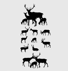 Deer Set Silhouettes vector image