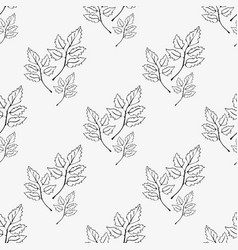 pattern of contours of leaves vector image