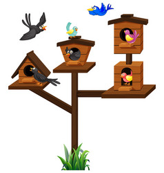 different types of birds in birdcage vector image vector image