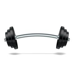 Metal realistic barbell vector