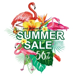 Template for summer sale Advertisement vector image