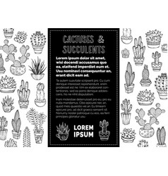Cactuses and succulents doodles background vector
