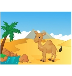 Cartoon camel with desert background vector