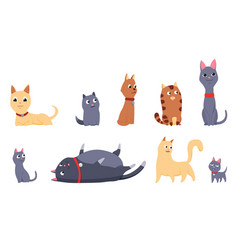 Cats and dogs friends collection different kinds vector
