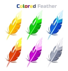 Colored Feather isolated on white background vector image