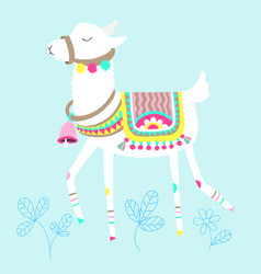 funny llama isolated on blue white alpaca animal vector image