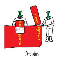 Metaphor main function of insulin vector