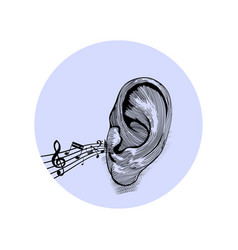 music notes on a staff come from ear vector image