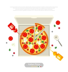 pizza flat style vector image