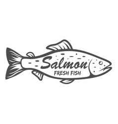 Salmon icon saltwater fish isolated on white vector