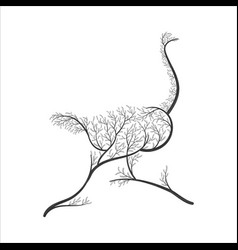 silhouette of ostrich stylized bushes for use as vector image