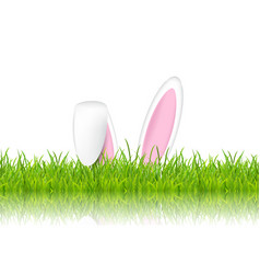 Easter bunny ears in grass vector