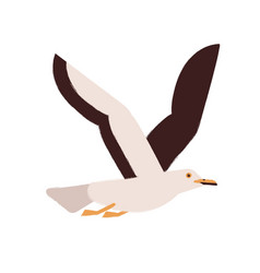 flying gull with wings up flat vector image