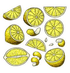 lemon tree line dance pdf