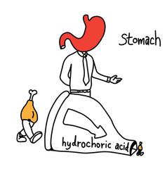 Metaphor function of stomach vector
