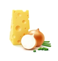 Piece of Swiss Cheese with Yellow and Green Onion vector