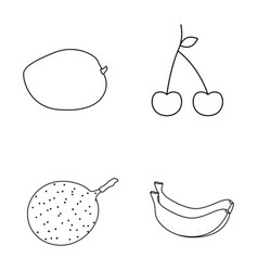 super delicious fruit vector image